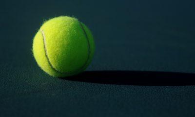 Balle de tennis. Crédit Photo: de Ben Hershey sur Unsplash